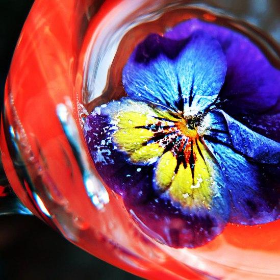 Cocktailpensé / © LEX 2013