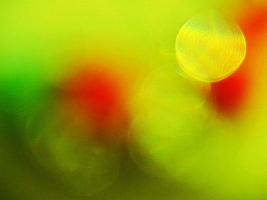 Palett / © LEX 2014